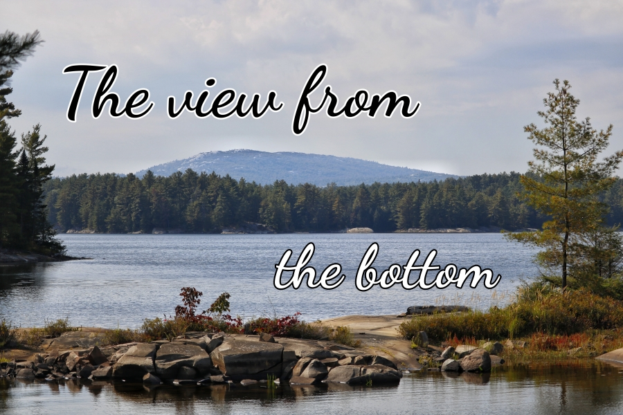 The view from thebottom